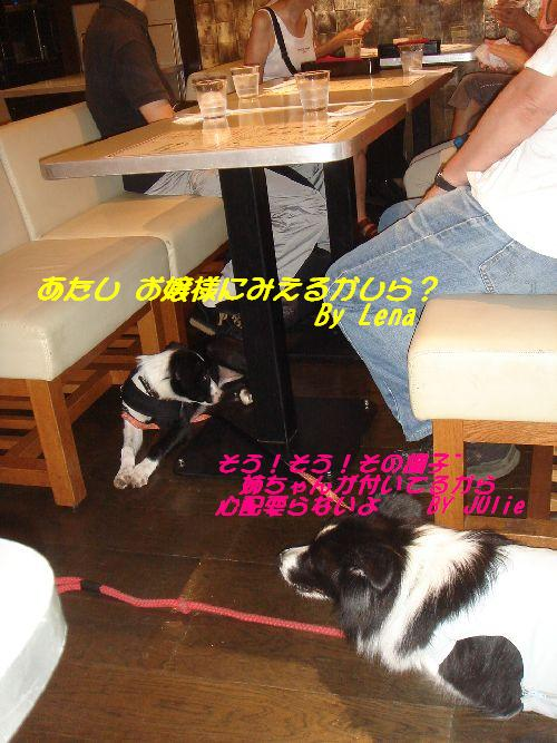 b0101991_1495987.jpg
