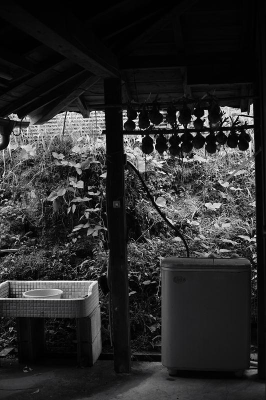 雨上がりの山里_f0032011_1931375.jpg