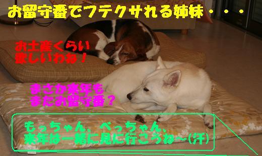 f0121712_17353635.jpg