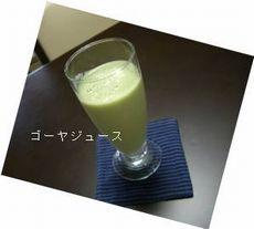 ゴーヤジュース_e0122219_231667.jpg