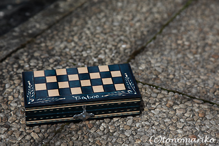 チェスのちょっと苦い失敗談 ハンガリー旅行7_c0024345_20225488.jpg