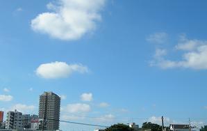 飛びたいな 夏の空_f0139963_645116.jpg