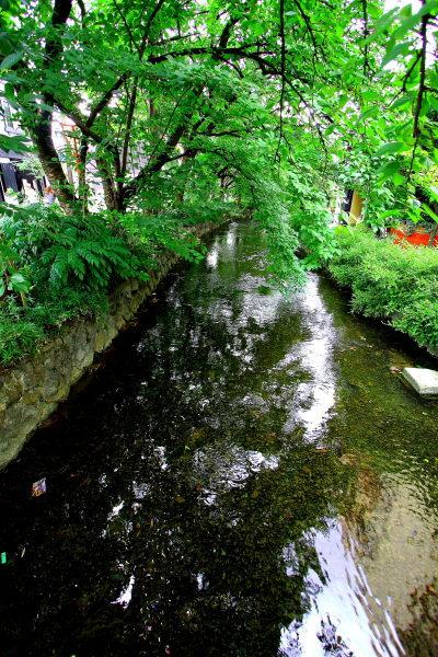 京都 のんびり お散歩日記 その1_e0155066_131663.jpg