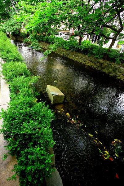 京都 のんびり お散歩日記 その1_e0155066_15385798.jpg