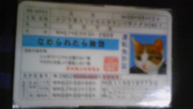 f0153166_1505673.jpg