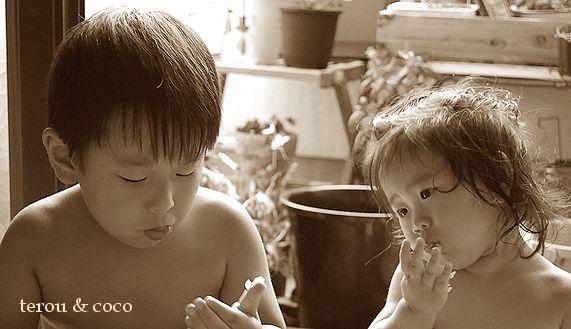 tarou&cocoの夏の思ひ出_a0105872_15213161.jpg