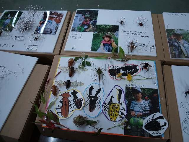 今森光彦さんの「全国こども昆虫キャンプ」_b0135573_15381892.jpg