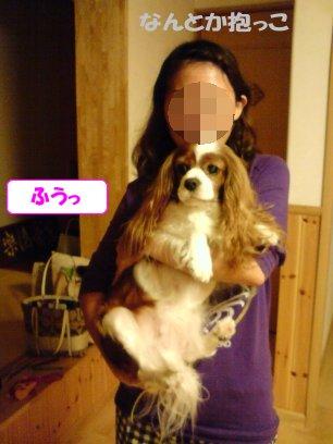 b0185323_1564995.jpg