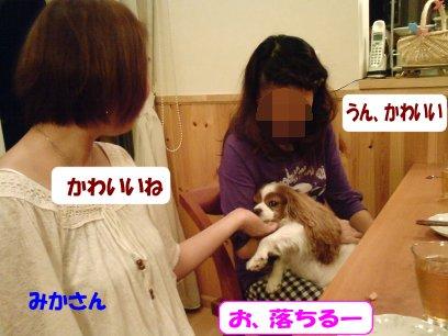 b0185323_1594481.jpg