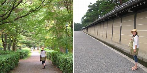 アオバズク@Kyoto 3(...と公式練習見学)_c0123363_2233520.jpg