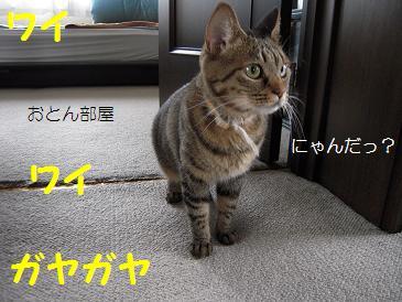 c0139488_847234.jpg