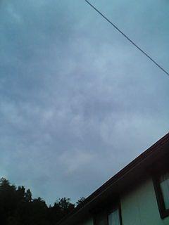 b0028598_2011565.jpg