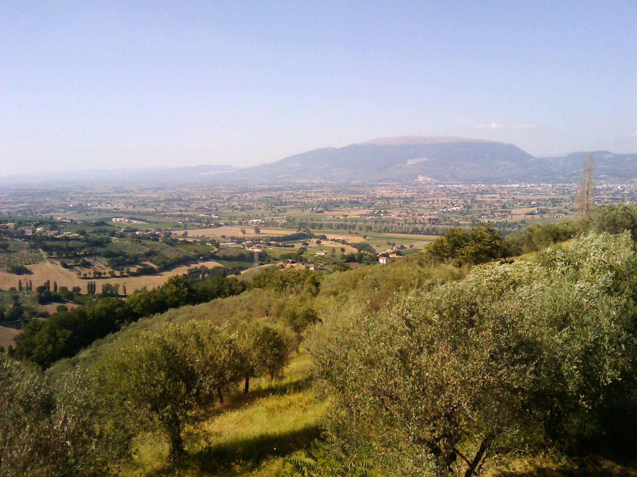 イタリアMontefalco_f0192307_177157.jpg