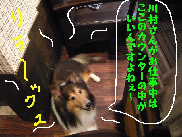 b0130018_17205413.jpg