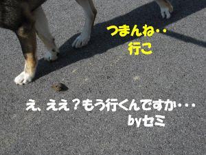 f0143123_20384082.jpg