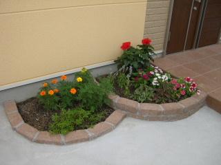 Il mio giardino_a0059035_001949.jpg