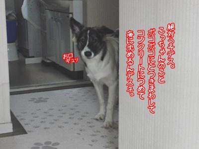b0185650_12451082.jpg