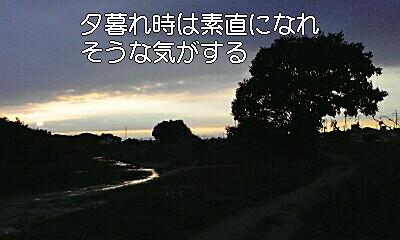 e0136066_237378.jpg