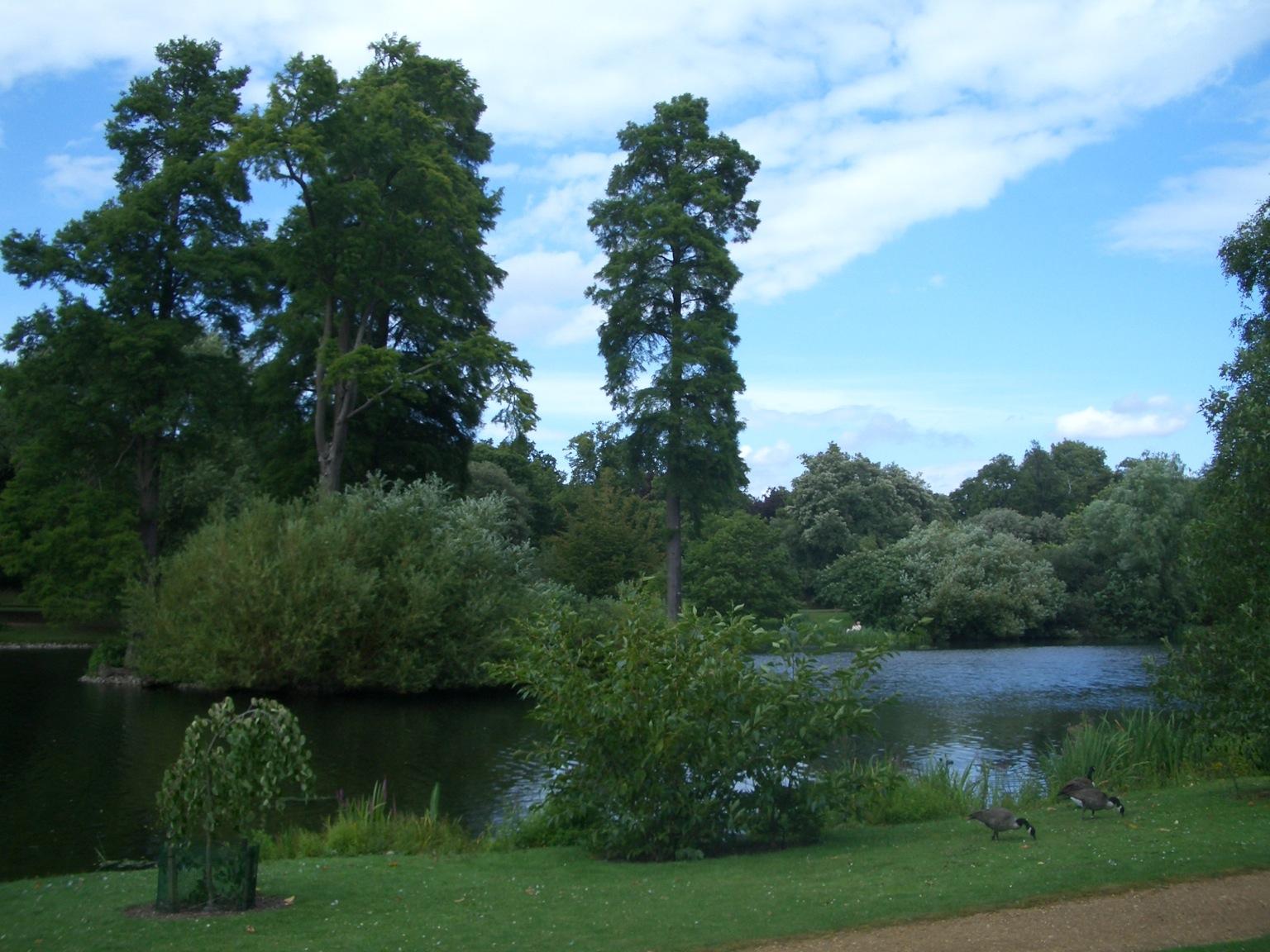 Kew Garden  パート2_a0137487_1925335.jpg