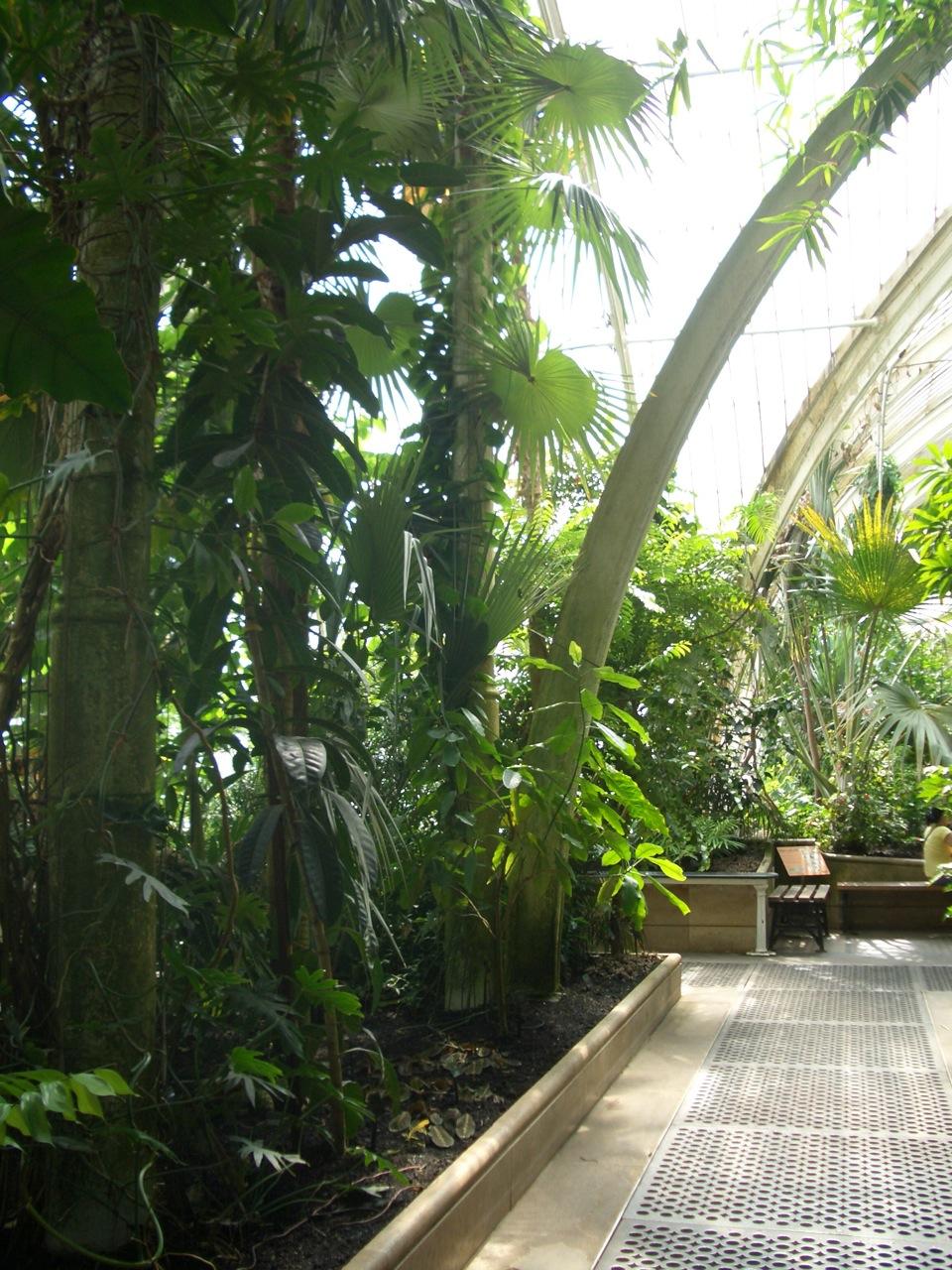Kew Garden_a0137487_2451610.jpg