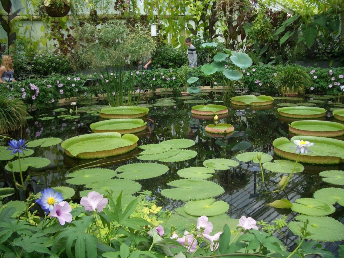 Kew Garden_a0137487_2475782.jpg