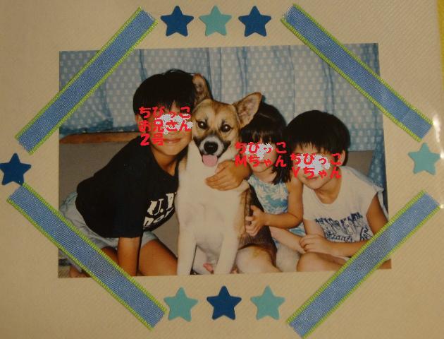 ケンちゃん_a0126590_23451730.jpg