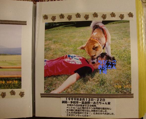 ケンちゃん_a0126590_23582019.jpg