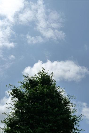 青空_b0171193_141521.jpg