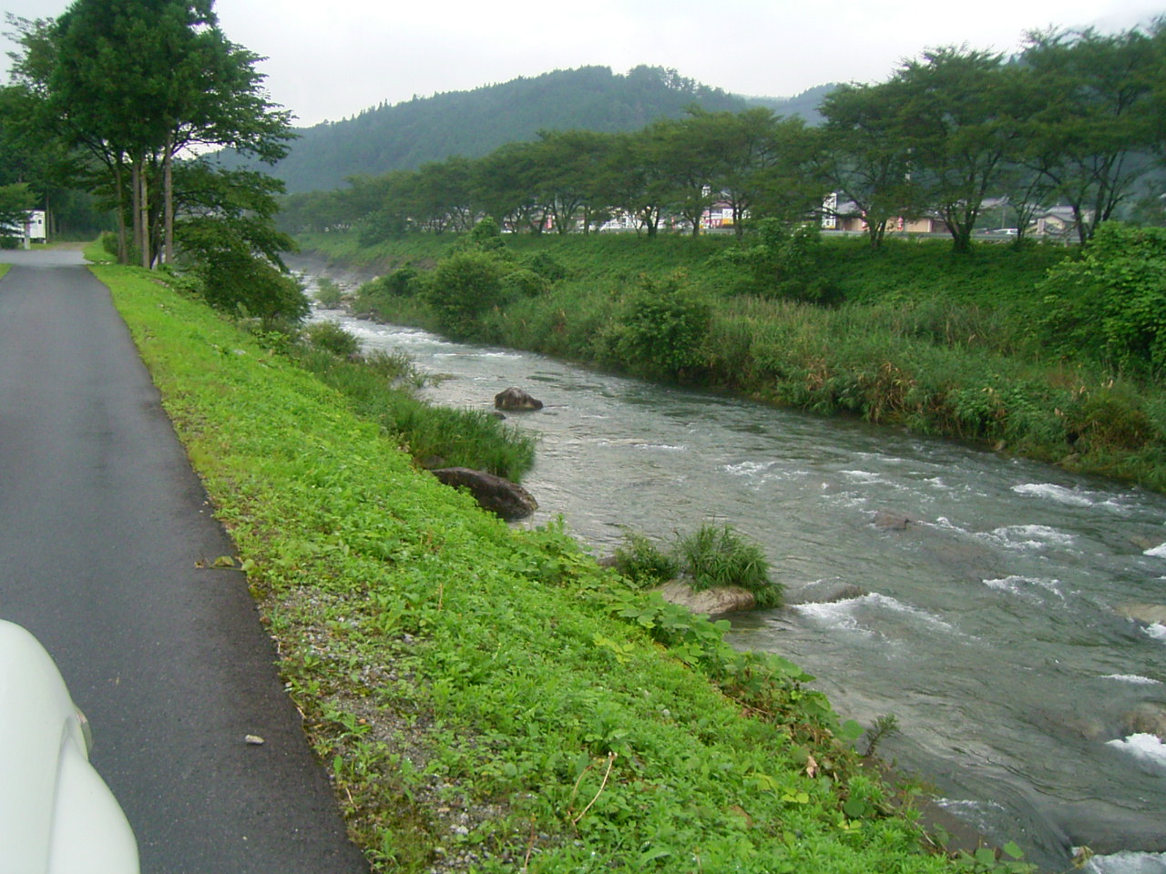 濡れているものは雨を恐れない。 _f0073301_1640323.jpg