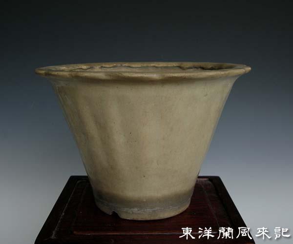 中国鉢「白交趾蘭鉢」,、。                 No.294_b0034163_15442565.jpg