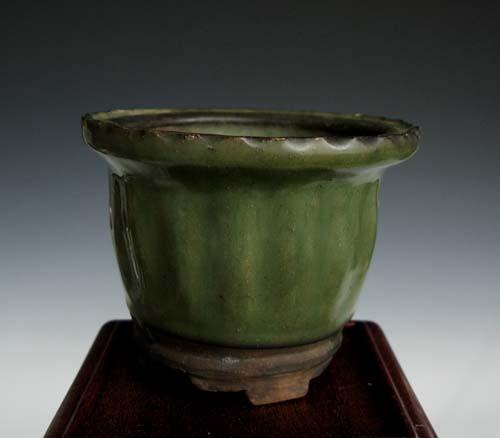 中国鉢「白交趾蘭鉢」,、。                 No.294_b0034163_15443722.jpg