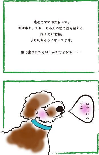 f0146388_16545085.jpg