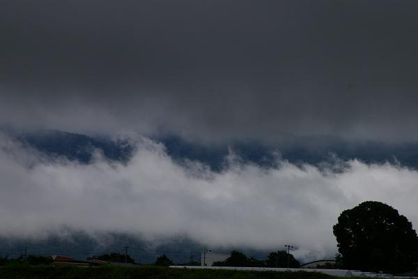 まだ雨模様。_f0163491_2032302.jpg