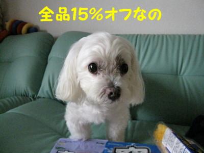 f0145192_16231981.jpg