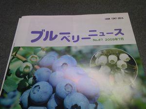 d0022845_198863.jpg