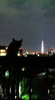 東京タワーを見つめる_d0118165_16532159.jpg