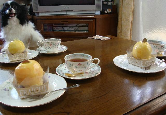 夏休み_a0126590_0545949.jpg