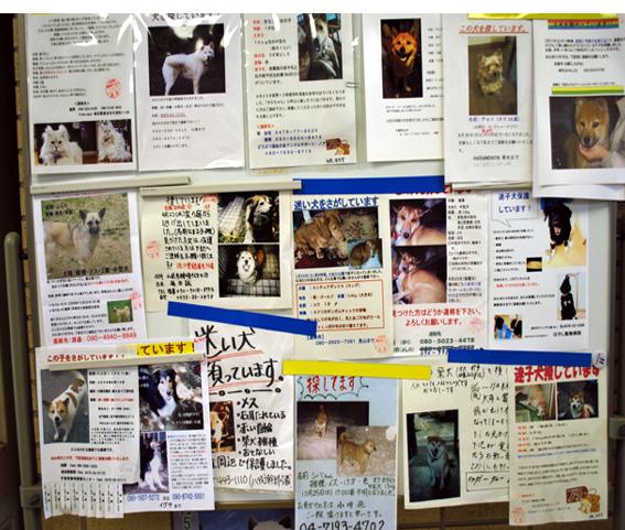7月31日(金)センター・レポート その2_f0078320_12272840.jpg
