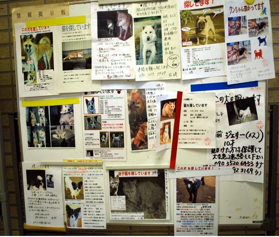 7月31日(金)センター・レポート その2_f0078320_12274029.jpg