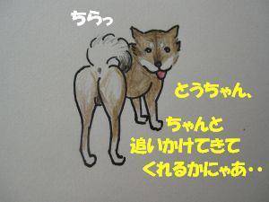 f0143123_934211.jpg