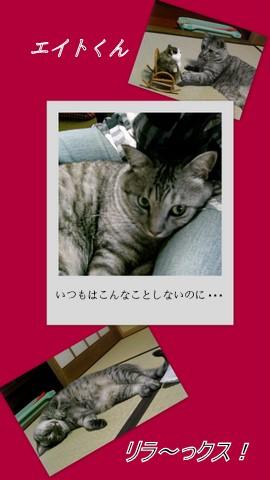 b0166327_16191274.jpg
