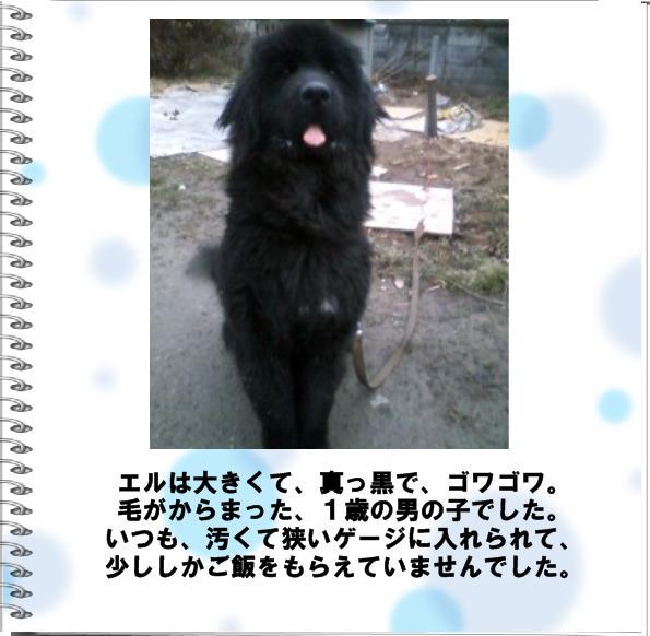 b0127531_203932100.jpg