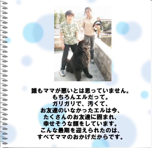 b0127531_2043116.jpg
