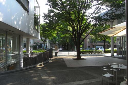 散歩のお供_a0006744_18514147.jpg