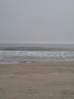新浜カップ_e0081753_6131721.jpg