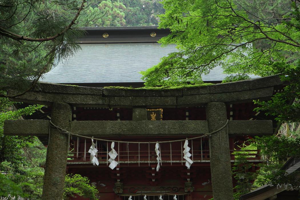 花園神社 北茨城市華川町_e0143883_1821387.jpg