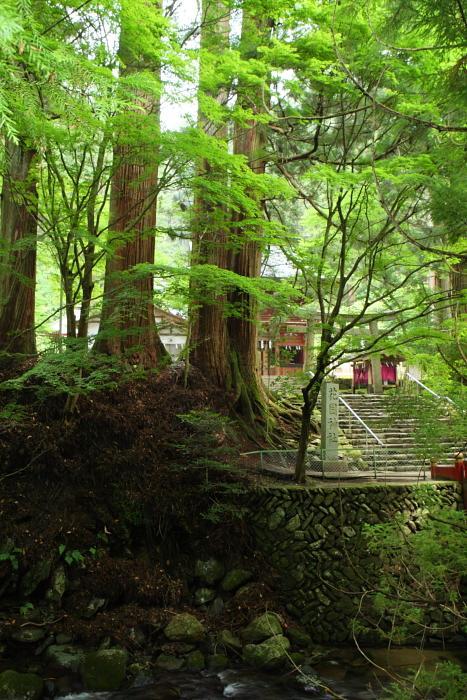 花園神社 北茨城市華川町_e0143883_18333282.jpg