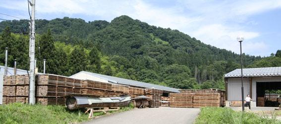 緑の森 木材工場(材木店)_e0054299_23561228.jpg