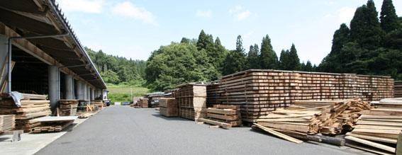 緑の森 木材工場(材木店)_e0054299_23571326.jpg