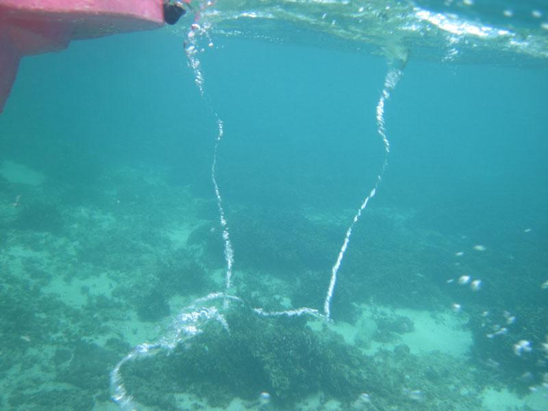 水面下_e0004009_0213386.jpg